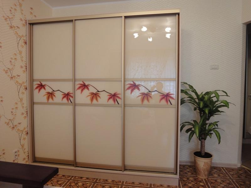 Корпусный шкаф-купе с фасадами стекло лакобель Ниола