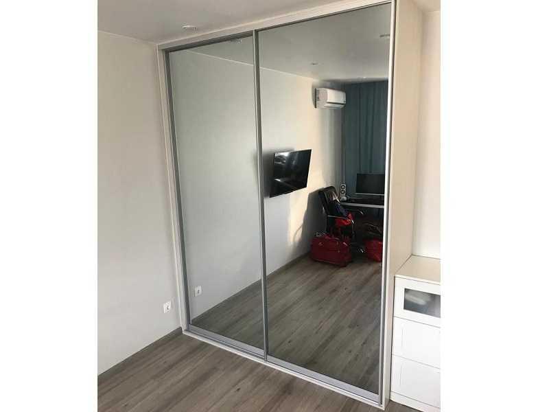 двери-купе зеркало графит в гостиную